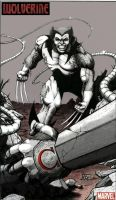 WOLVERINE vs. OMEGA RED by KSowinski