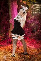 Bunny Maid Super Sonico - Kana Cosplay by faramon