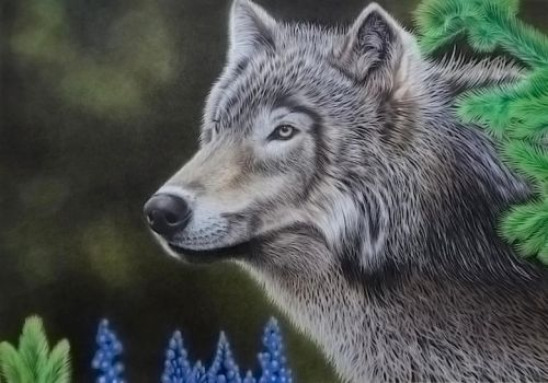 Wolf (Lupo) by LucaCastiglione
