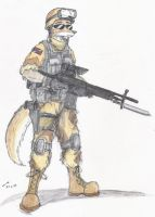 On patrol by contrail09