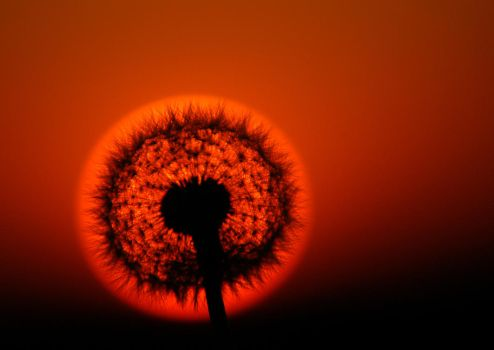Solar eclipse by Juhan