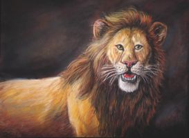 Lion portrait - pastel by Bisanti
