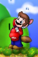 Racoon Mario by EJW