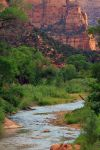 Zion by whereYOUendd