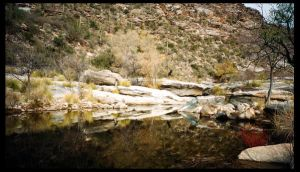 Sabino Canyon 1 by rifka1