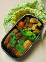 Risotto and Teriyaki Patty Bento by Demi-Plum