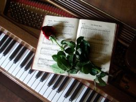 Love Song by barefootliam