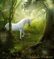 Unicorn Forest by Pinkabelle