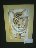 Tiger Cub by wittlecabbage