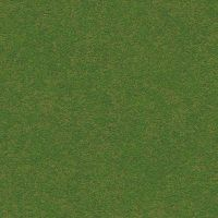 Dark_Green_grass_ground_land_dirt_aerial_top_seaml by hhh316
