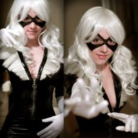 Black Cat Preview by Flying-Fox