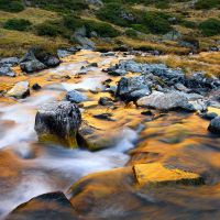 water of gold by MartinAmm