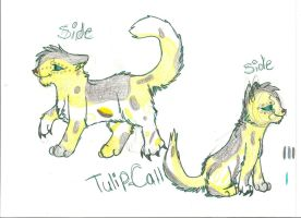 TulipCall 4 shadowclan by ChrystalStarWolf