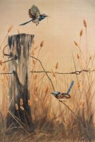 Blue Wrens - WATERCOLOUR by AstridBruning