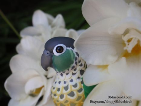 Conure in the Flowers (Comm) by The-Wandering-Bird