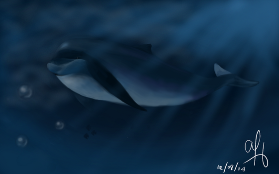 Dolphin by ayabrea432