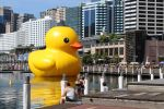 Giant Rubber Ducky by Wooltree