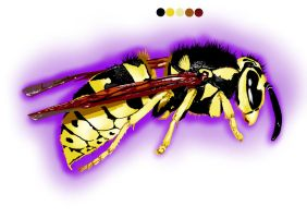Wasp by Umbaca