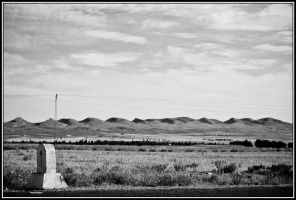 The Fields by Youcef07