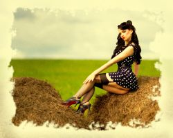 pin up and hay by symbliarotta