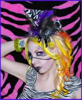 . Zebra Countess . by Countess-Grotesque