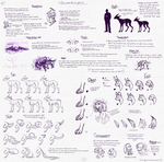 NYBIAN SPECIES CHART 2: extra info by aevei