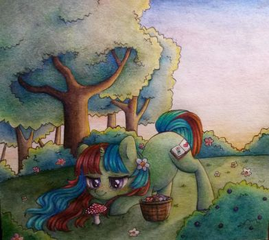 Early morning in the forest by Viki-Niki