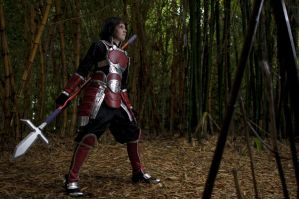 Samurai Warriors - Yukimura by level4chaos
