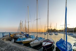 Masts at Morges by Rikitza