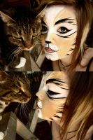 Rum Tum Tugger Make-Up by bonjellicle