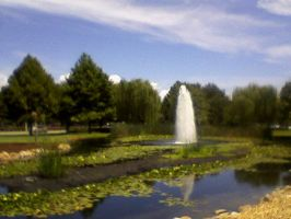 Central Park Fountain, Largo Florida by Eric-was-here