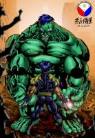HULK vs WOLVERINE by WOLVERINE76