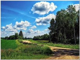A landscape from Latvia... by Yancis