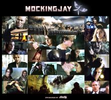 Mockingjay Montage by AnaB