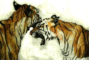 Tiger II Pastel Pens by annaKuad