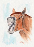 Horse Laugh 2 by IckyDog