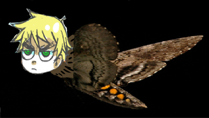 ABSOLUTELY INVINCIBLE ENGLISH MOTH by BlondGamer