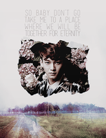 EXO-M Chen: Don't Go Edit/Poster by pocket-girl