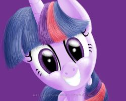 Twilight Sparkle by ShadowPhoenixRisen