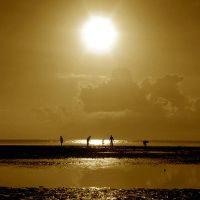 the golden sun by hersley