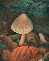 Young inocybe by AldemButcher