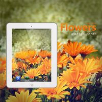 iPad Flowers Wallpaper by Martz90