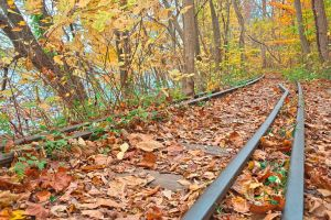 Abandoned Autumn Railroad by somadjinn