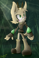 CM: SonicWindAttack by shadowhatesomochao