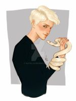 Slytherin by Natello
