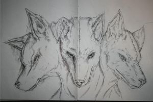 Sketchbook Page 7 by xCarnationFox