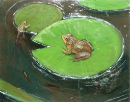 Frog Cycle by CathyStephens