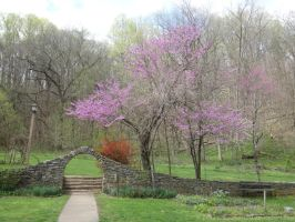 Archway and a Purple Tree by SnapShot120