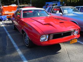 1973 Ford Mustang III by Brooklyn47