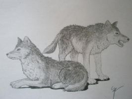 in every heart, there are two wolves by patsik234